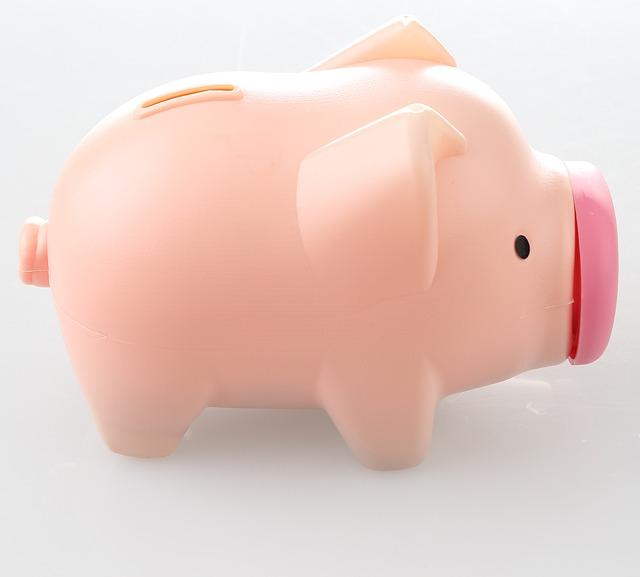 Jak efektivně ušetřit peníze na dovolenou?