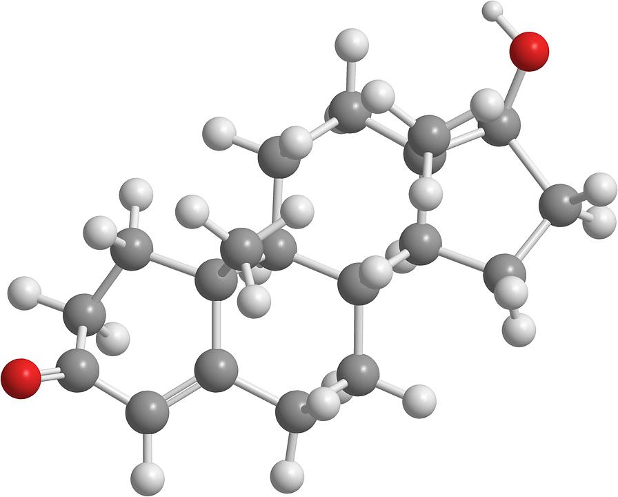 testosteron chemie
